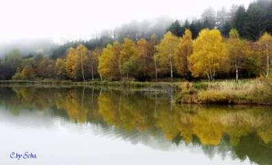 Herbstidylle am Richterteich
