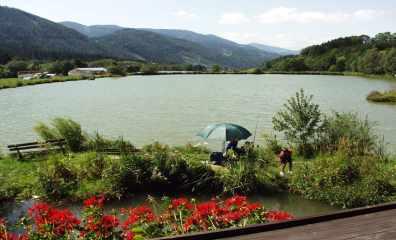 Panoramablick über den Karpfenteich